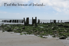 Feel the breeze of Ireland